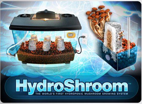 NEW: HydroShroom Mushroom Growing Kit!