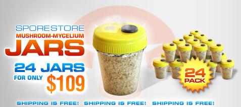 SporeStore Mushroom Mycelium Jars
