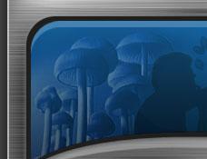 Spores mushroom spores syringes psilocybe mushrooms with